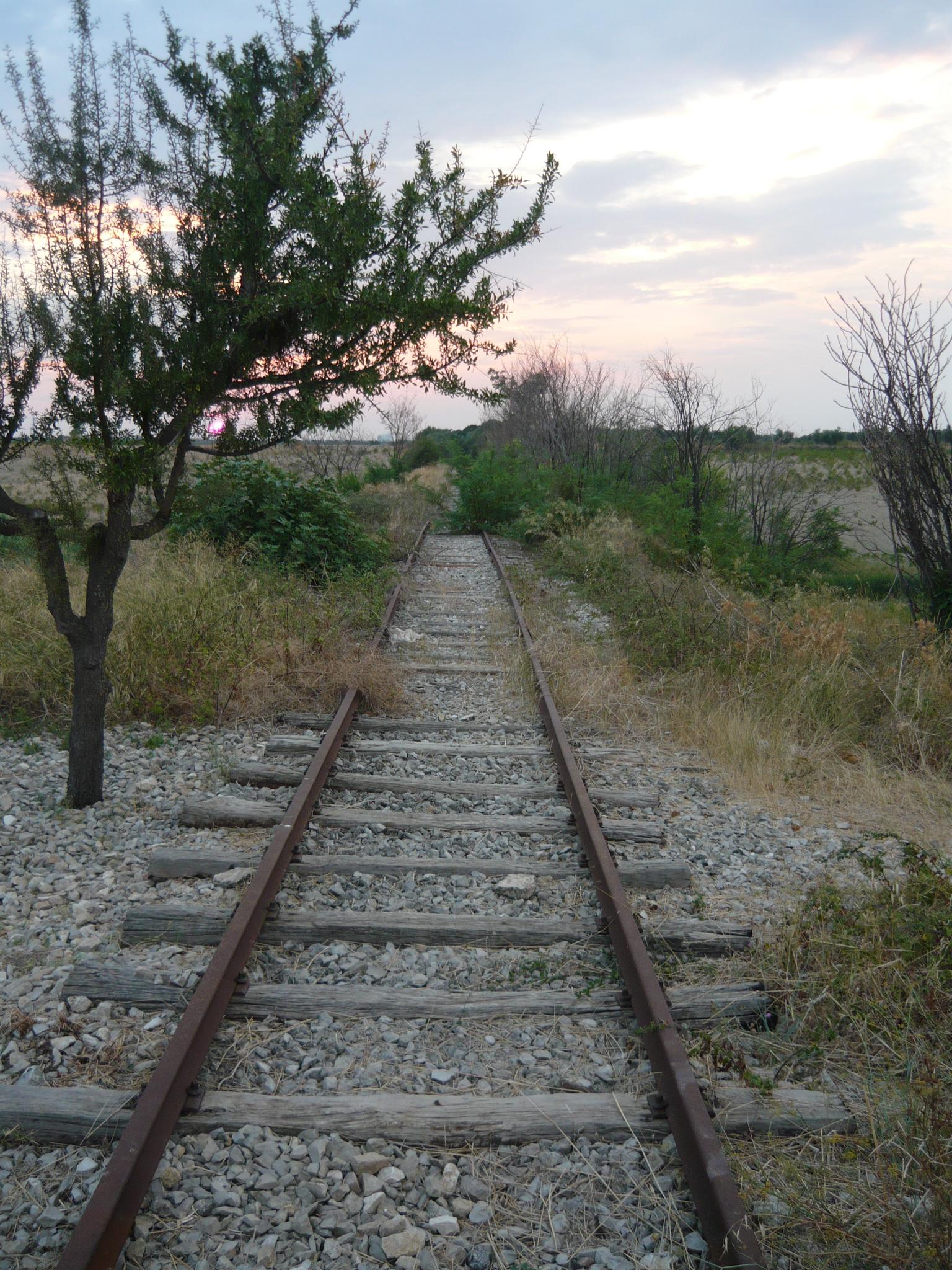 ferrovia circummarpicolo taranto