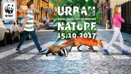 Urban Nature Mottola Martina