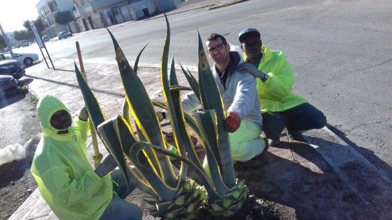 Progetto verde sociale si cercano tre lavoratori for Progetto verde